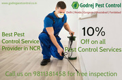 10% OFF on all Pest Control Services in Noida,  Delhi NCR-GPC-981138145