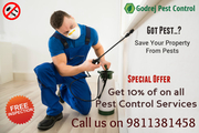 Got Pest..?  Get Quality Pest Control Services at FLAT 10% Discount