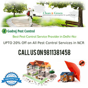 20% OFF on all Pest Control Treatments-9811381458
