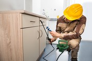 Pest Control Management Services in Noida