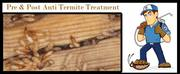 Anti termitet reatment service in Chandigarh,  Panchkula,  zirakpur